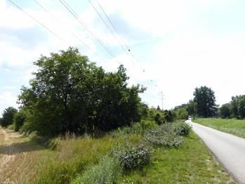 Prodej pozemku 6047 m², Brno