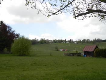 Pohled přes pastviny koní. - Prodej zemědělského objektu 6900 m², Krásná