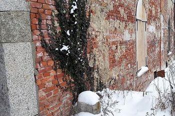 Detail zdi. - Prodej zemědělského objektu 6900 m², Krásná