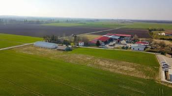Prodej pozemku 5971 m², Záryby