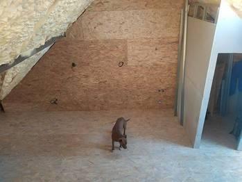 Prodej domu 200 m², Perná