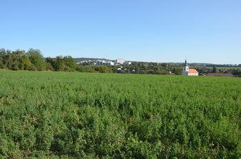 Prodej pozemku 3819 m², Vyškov