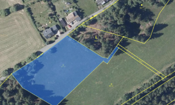 Prodej pozemku 7001 m², Bublava