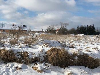 Prodej pozemku 10000 m², Střítež