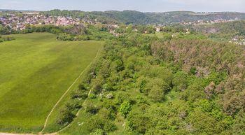 Ovocný sad, Roztoky - Prodej pozemku 14749 m², Roztoky