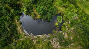 Prodej pozemku, 10000 m2, Dublovice